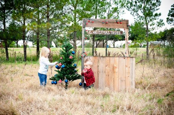 Tree Blog02